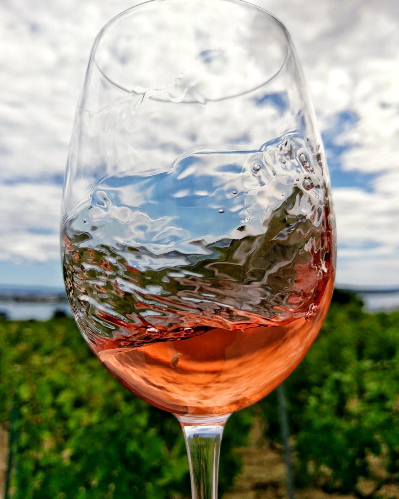 Putalj Rose wine in glass